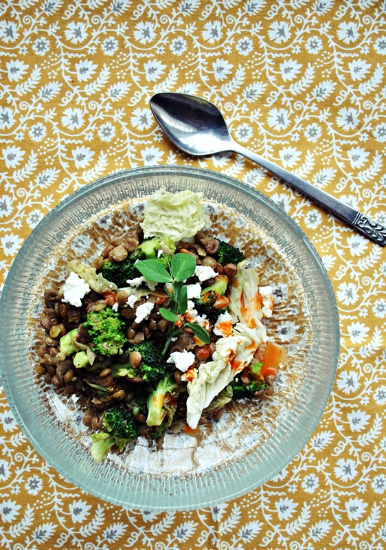 Warm Lentil Salad with Broccoli, Napa Cabbage, and Feta Cheese | okie ...